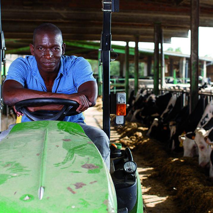 Exploitant agricole avec bovins bénéficiant de l'épargne projet